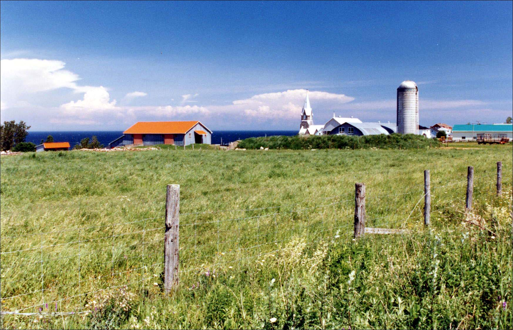 North Coast Farm